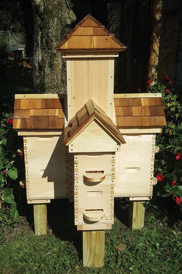 Munster Hive